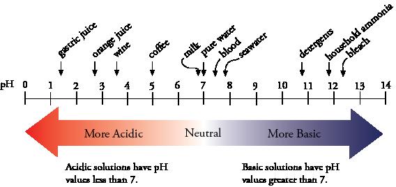 pH and Equilibrium
